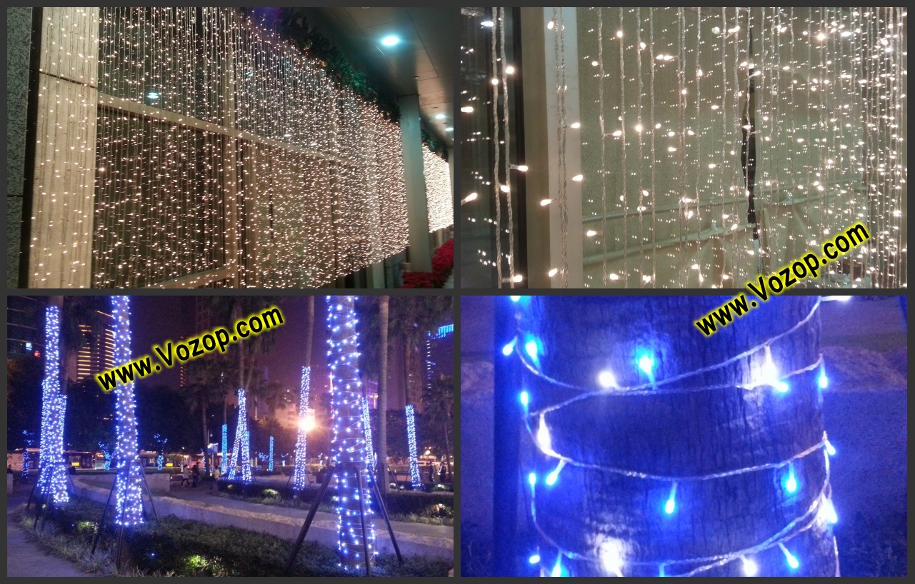 Beautifully_LED_fairy_lights_display_on_wall_on_trees_led_lights_decorations